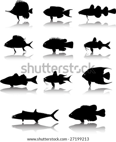 Sea animals fish silhouettes raster set