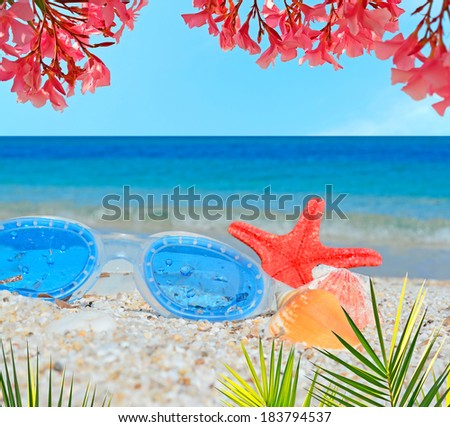 sea goggles with starfish and shells on a white beach