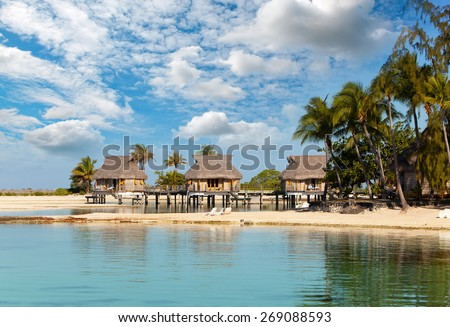 seacoast with palm trees and small houses on water