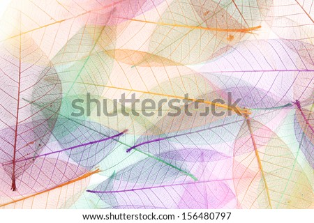 Seamless color leaves background