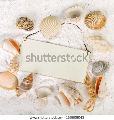 seashells in the sand at the beach with a board for text