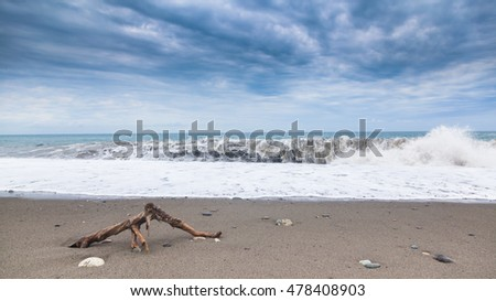 Seashore with a sandy beach, wave, driftwood and sky