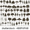 Set of black silhouettes of trees - stock photo