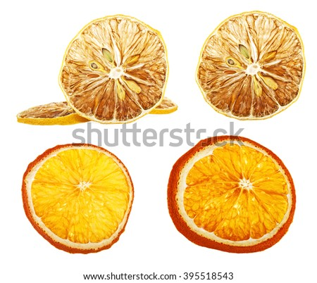 Set of different dried slices of orange and lemon on a white background