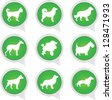 Set Of White Dog on Green Icons Isolated on White Background - stock