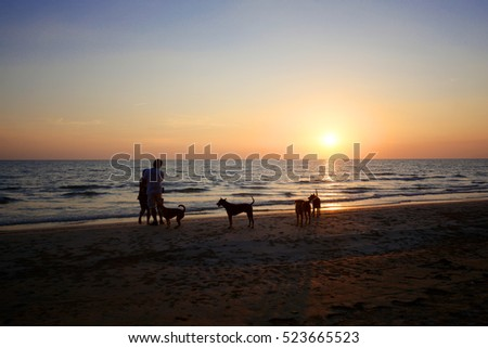 Shadow people and dogs at sunset along the beach