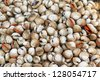 Shellfish Blood Cockles market edible background - stock photo