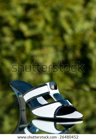 Shoe with trees in the background