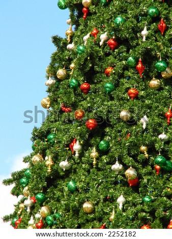 Christmas Tree Altamonte Springs Florida