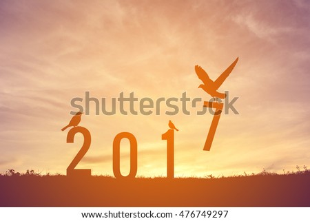 Silhouette bird flying  on sunset. Concept new year