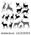 Silhouette Deer including fawn, doe bucks and stag. Also two stags fighting ans a family group set - stock vector
