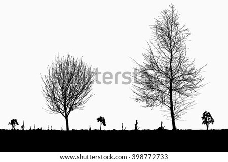 Silhouette of tree, bush with bare branches. Winter scenery trees afar landscape and black space for text, illustration