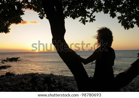 silhouette of woman sitting in tree on a beach watching sunset