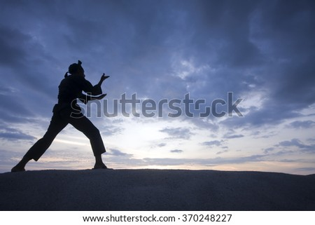 Silhouette of young boy performing a pencak silat, Malay traditional discipline martial art