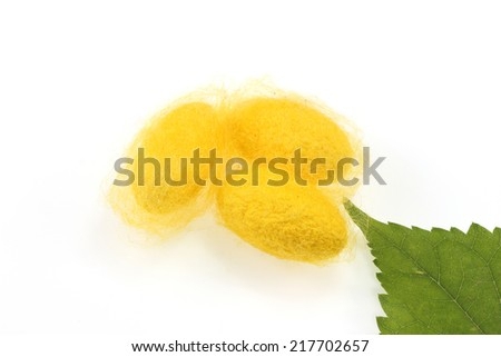 Silkworm cocoon and green leaves on white background