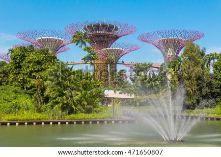 singapore august 14 2016 supertree grove in the blue sky at gardens by