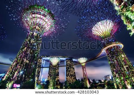 Singaporejun Night View Supertree Grove Stock Photo