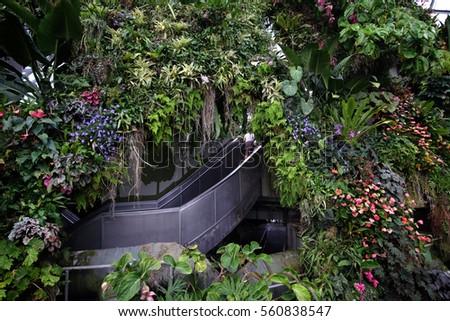 Garden By The Bay Award singapore jan 2016 winter garden singapore stock photo 560838532