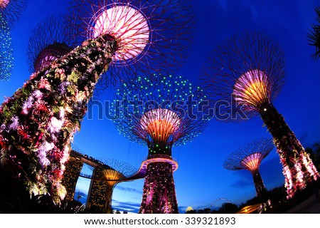 SINGAPORE - July 8: Night view of Supertree Grove at Gardens by the Bay on July 8, 2013 in Singapore. Spanning 101 hectares of reclaimed land in central Singapore