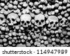 Skulls and bones. Black and white image. - stock photo