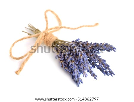 Small bouquet of a dried lavender. Isolated.