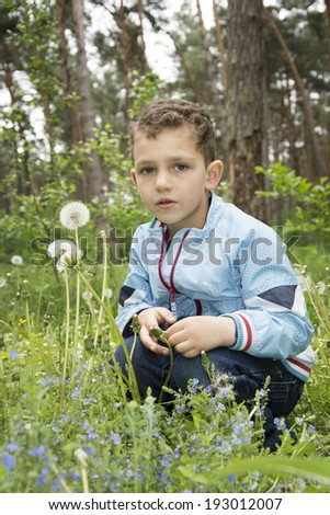 Small curly boy is sitting in a forest near the dandelions.