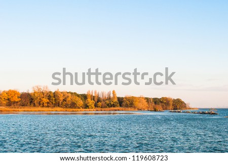 Small island with green and yellow trees