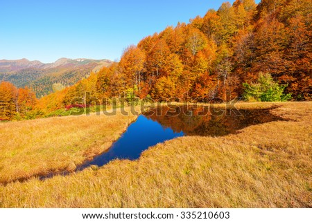 Small lake by the autumn mountain forest.