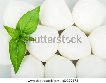 Small pieces of mozzarella and basil closeup