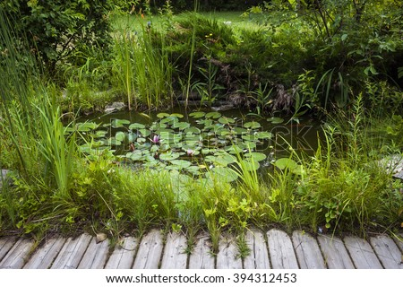 Small pond as part of landscaping with aquatic plants and water lilies surrounded by lush vegetation near wooden board walkway