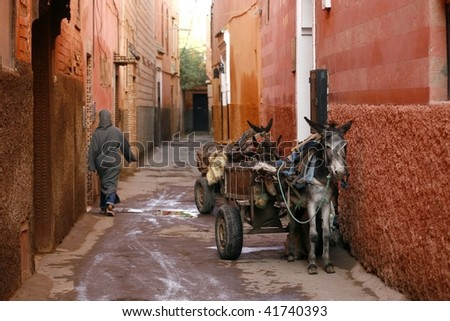 Small street in Marrakech's medina (old town). In Marrakech the houses are traditionally pink. Morocco.
