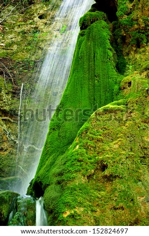 small waterfall among rocks covered with moss