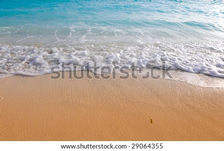 small wave rolling on golden beach