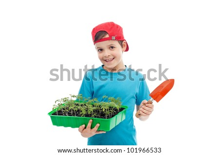 Smiling boy with tomato seedlings in tray and small gardening spade - isolated