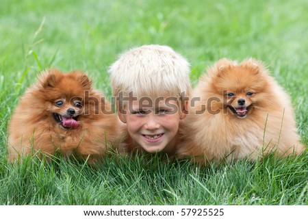 Smiling boy with two dogs are lying on the grass