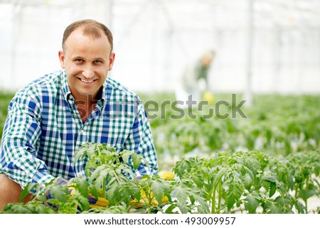 Smiling man in greenhouse looking at camera