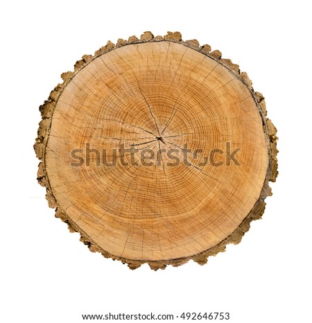 how to get tree stump smooth