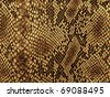 snake skin with the pattern lozenge style - stock photo