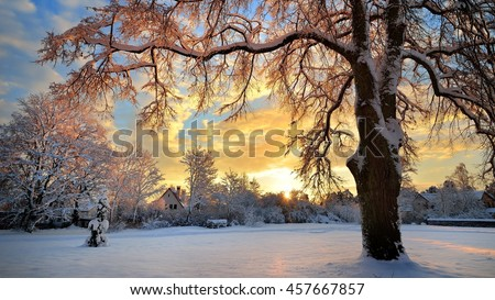 Snow covered winter countryside at the sunset in Latvia