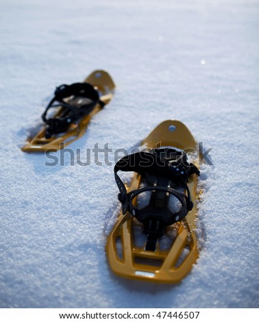 snowshoes in snow on a lovely yet frosty winter day