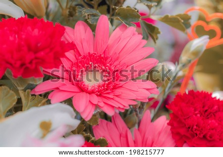 soft of colorful flowers, floral background