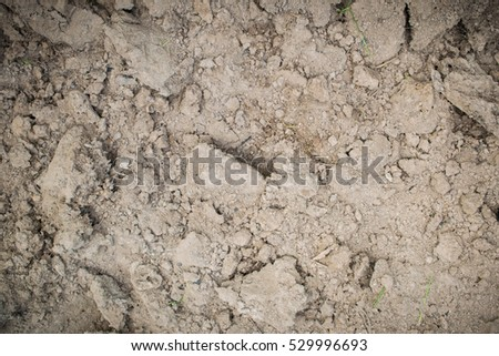 Soil background pattern