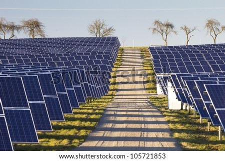 Solarpark with path and trees
