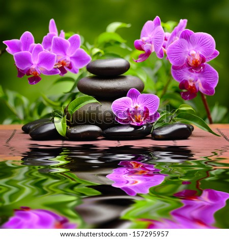 Spa Concept With Zen Basalt Stones And Orchid Stock Photo