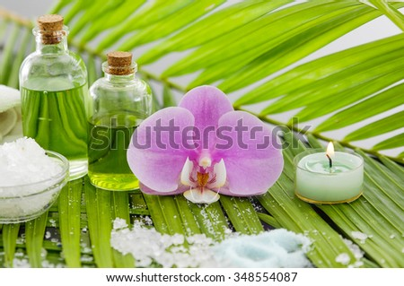 spa setting and palm leaf with pile salt