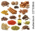 Spice collection isolated on white background - stock