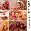 Spices collage - stock photo