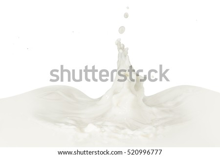 splashing milk isolated on white background