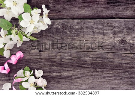 Spring apple tree blossom on rustic wooden background with copy space for greeting message. Mother's Day and spring background concept.