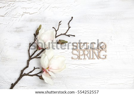 spring background with nice flowers on white wooden subsoil